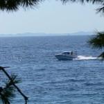 bluestar-holiday-cabin-z-drive2